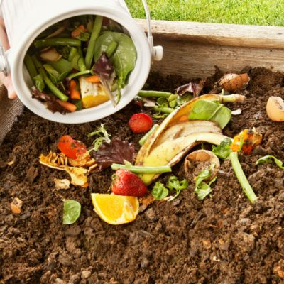 Kitchen Scrap Composting