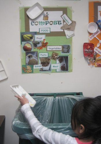 Compost sorting poster